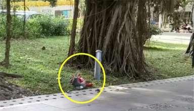 Đứa trẻ nằm khóc ăn vạ bên đường.